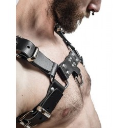 More about Mister B Leather Chest Harness L